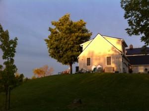 Morning sun on Juniper Hill